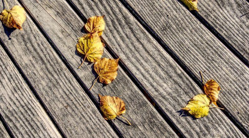 Nettoyer terrasse en bois